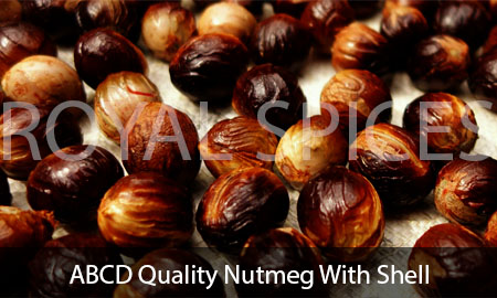 ABCD Quality Nutmeg With Shell