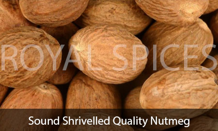 Sound Shrivelled Quality Nutmeg